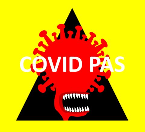 COVID v ČR, COVID PAS, cestování s COVIDem